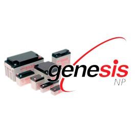 Genesis NP55-12R